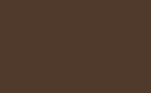 zemitá hnedá farba